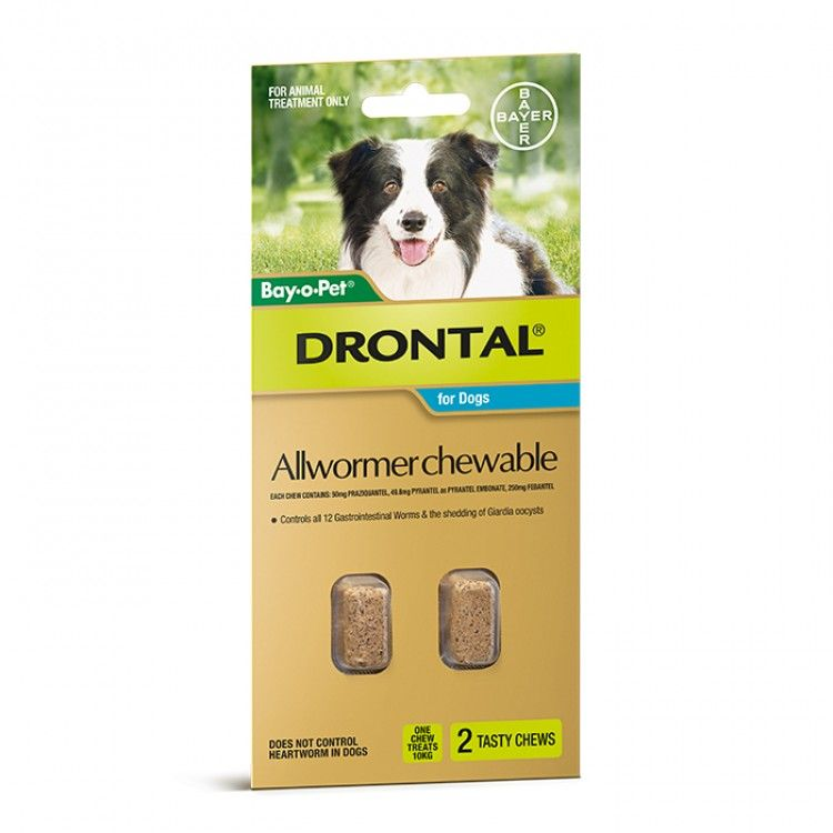 DRONTAL ALLWORMER CHEWABLE FOR DOGS
