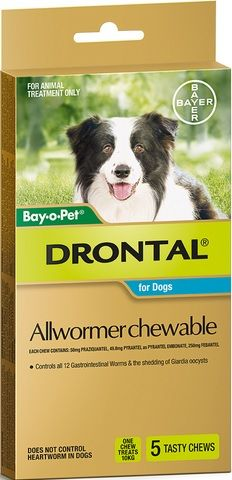 DRONTAL ALLWORMER CHEWABLE FOR DOGS 5 CHEWS