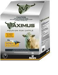 MAXIMUS POUR ON CATTLE 6lt